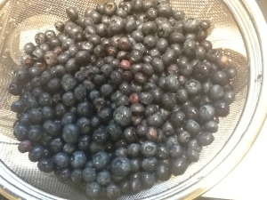 blueberry pie berries