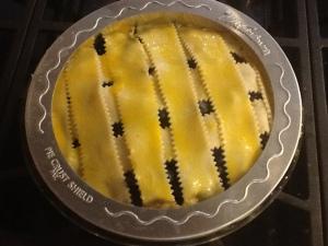 blueberry pie shield