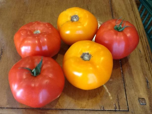 tomato salad:tomatoes