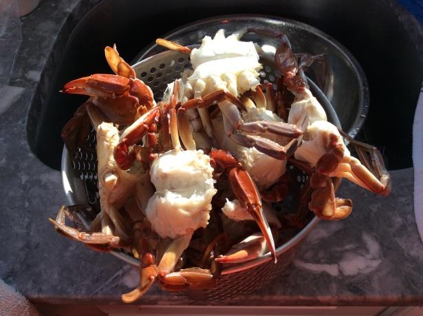 crab sauce strainer
