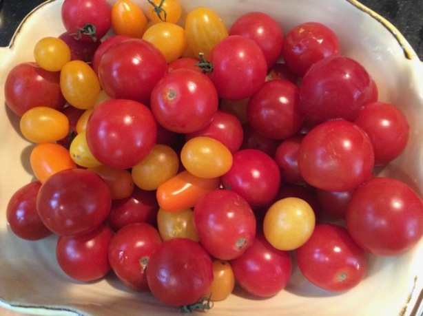 Richard's cherry tomatoes