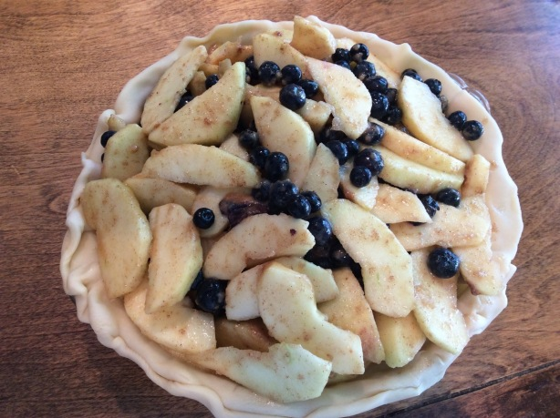 blueberry pie filled 1